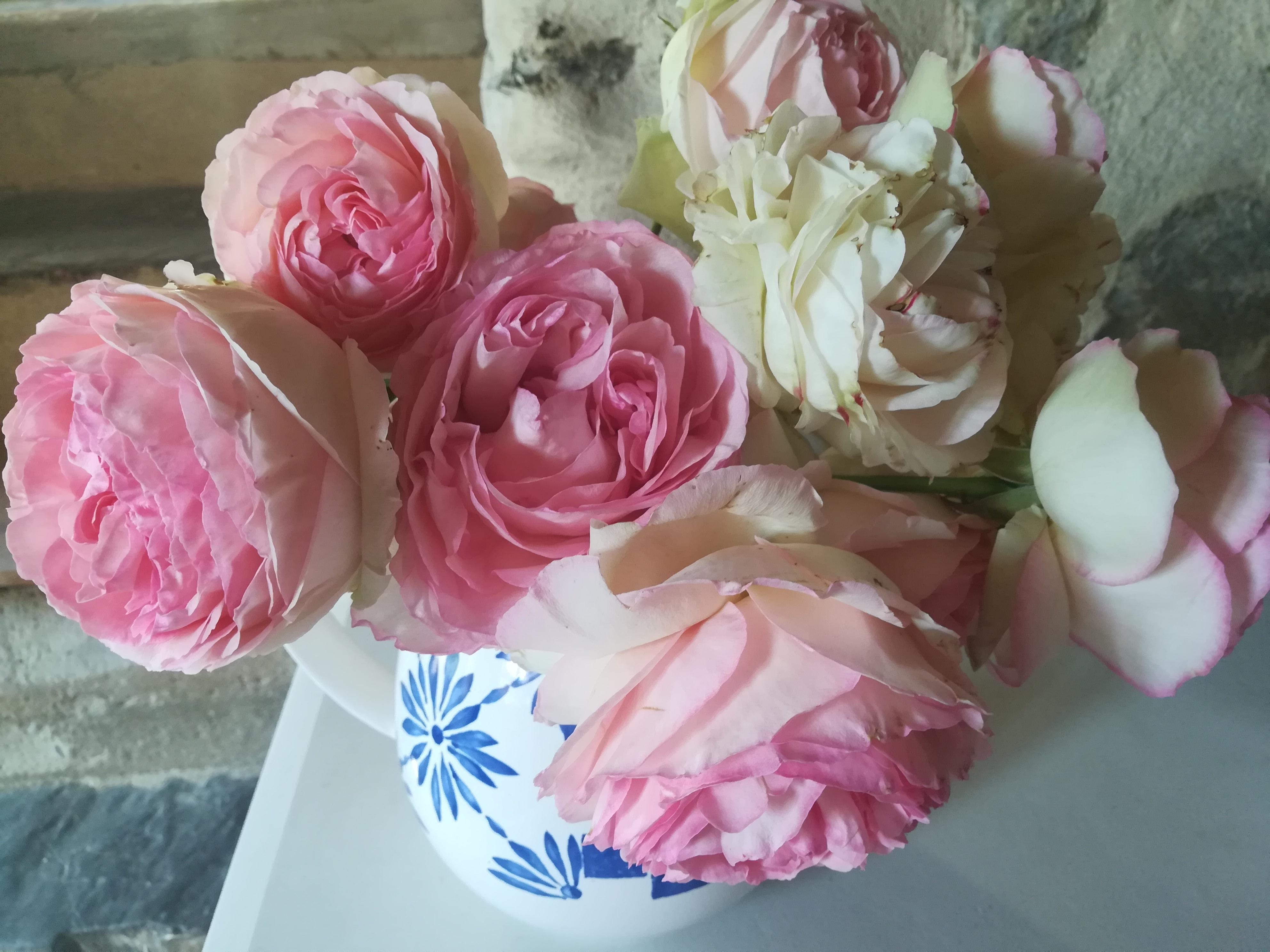 Gite les Clots Clément - bouquet